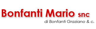 bonfantimario.it